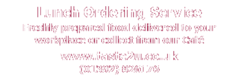 Banner md taste2u phone web copy